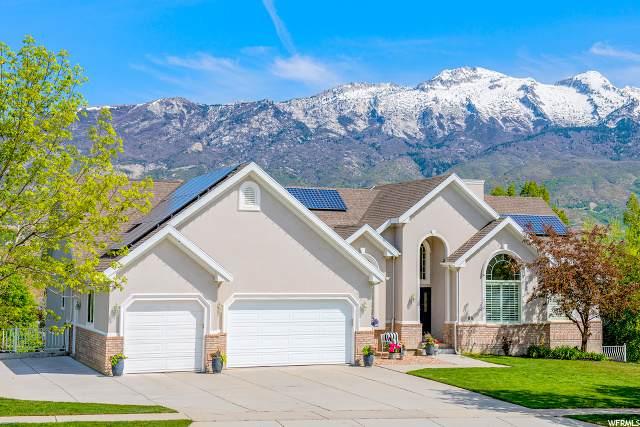 88 Cascade Ave, Alpine, UT 84004 (#1673409) :: Colemere Realty Associates