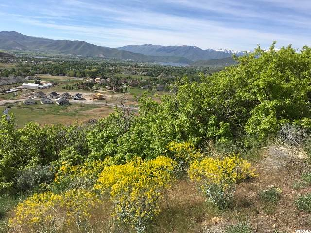 400 Luzern Rd, Midway, UT 84049 (MLS #1688169) :: High Country Properties