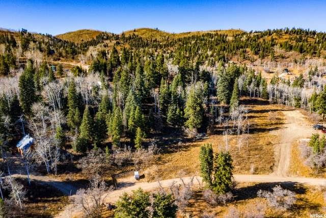 2180 Running Deer Cir, Coalville, UT 84017 (MLS #1710955) :: High Country Properties