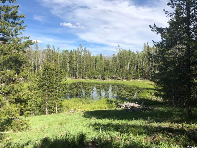 2359 Stillwater Lot 19 Loop, Kamas, UT 84036 (MLS #1264006) :: High Country Properties