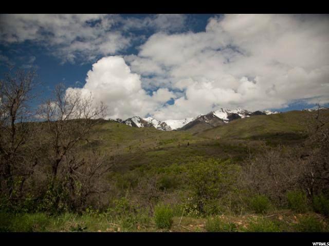 Hobble Creek Canyon Rd - Photo 1