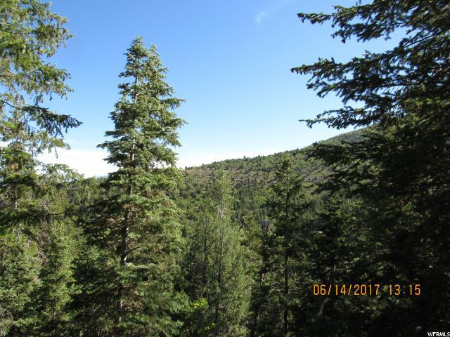 58 Acres Pine Creek Rd, Mount Pleasant, UT 84647 (#1382150) :: The Perry Group