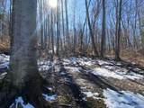 4482 Schuss Mountain Road - Photo 55