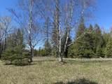 6598 Mackinac - 40 Acres Trail - Photo 24