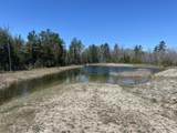 6598 Mackinac - 40 Acres Trail - Photo 26