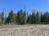 6598 Mackinac - 40 Acres Trail - Photo 30