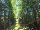 6490 Hubbard Lake Trail - Photo 102