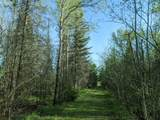6490 Hubbard Lake Trail - Photo 106