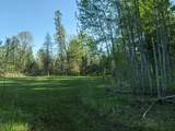 6490 Hubbard Lake Trail - Photo 108