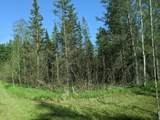 6490 Hubbard Lake Trail - Photo 111