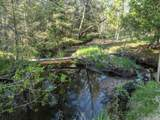 6490 Hubbard Lake Trail - Photo 112