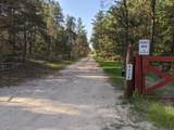 6490 Hubbard Lake Trail - Photo 7