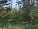 6490 Hubbard Lake Trail - Photo 85