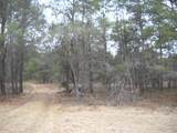 0 Snowmobile Trail - Photo 5