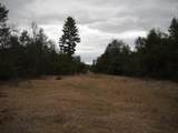 0 Snowmobile Trail - Photo 6