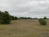 160 Acres M-66 - Photo 12