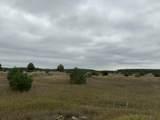 160 Acres M-66 - Photo 14
