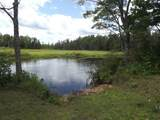 14997 Co Rd 462 - Photo 13