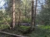 6490 Hubbard Lake Trail - Photo 101