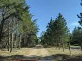 6490 Hubbard Lake Trail - Photo 115