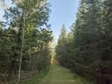 6490 Hubbard Lake Trail - Photo 98
