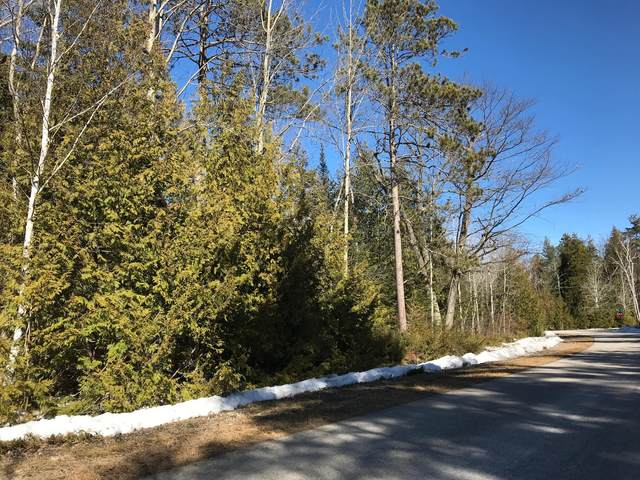 Cedar Terrace Drive, Presque Isle, MI 49777 (MLS #201810702) :: CENTURY 21 Northland