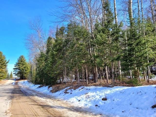15967 Lakeview Drive, Wolverine, MI 49799 (MLS #201811040) :: CENTURY 21 Northland