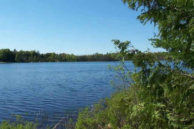 Spile Dam Road, Millersburg, MI 49759 (MLS #201811606) :: CENTURY 21 Northland
