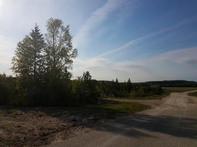 Boundary Road, St. Ignace, MI 49781 (MLS #201811886) :: CENTURY 21 Northland
