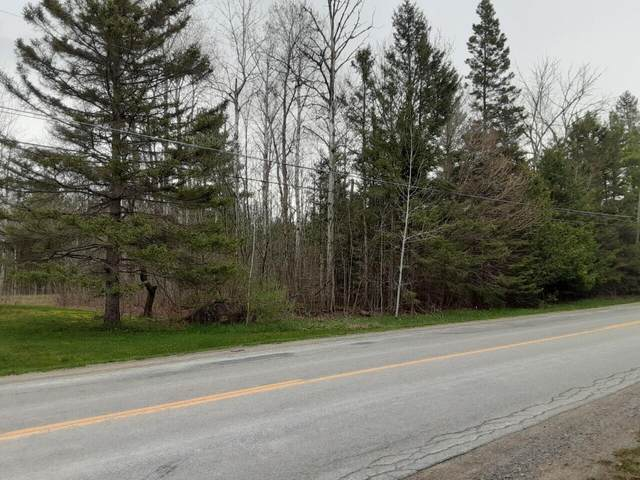 Truckey Road, Alpena, MI 49707 (MLS #201812098) :: CENTURY 21 Northland