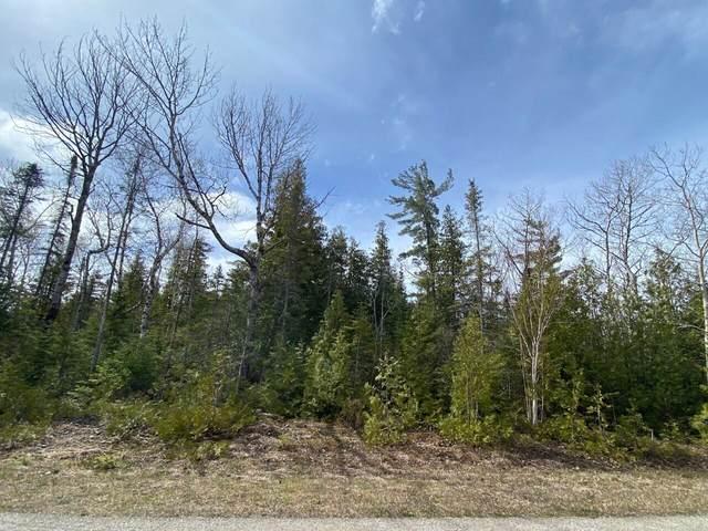 Lot 239 Bay Shore Drive, Presque Isle, MI 49777 (MLS #201812196) :: CENTURY 21 Northland