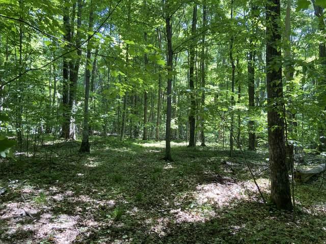 33 Mt. Vernon Hills Drive, Vanderbilt, MI 49795 (MLS #201813024) :: CENTURY 21 Northland