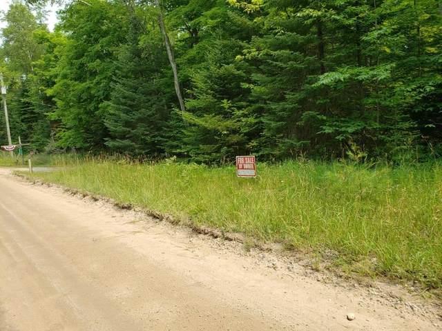 LOT 10 E Side Drive, Beaver Island, MI 49782 (MLS #201813997) :: CENTURY 21 Northland