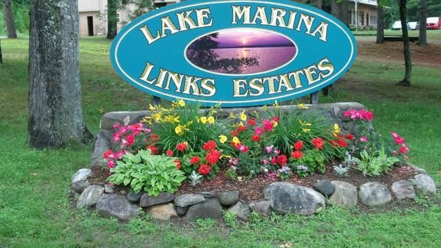 6380 Link Boulevard, Indian River, MI 49749 (MLS #201814820) :: CENTURY 21 Northland
