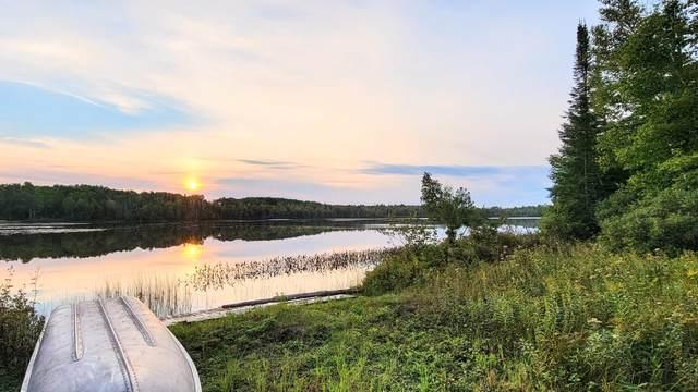 9824 Ocqueoc Lake Road, Ocqueoc, MI 49759 (MLS #201815114) :: CENTURY 21 Northland