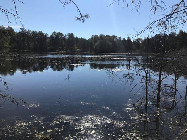 4889 Elmer Lake Trail, Lewiston, MI 49756 (MLS #201815263) :: CENTURY 21 Northland