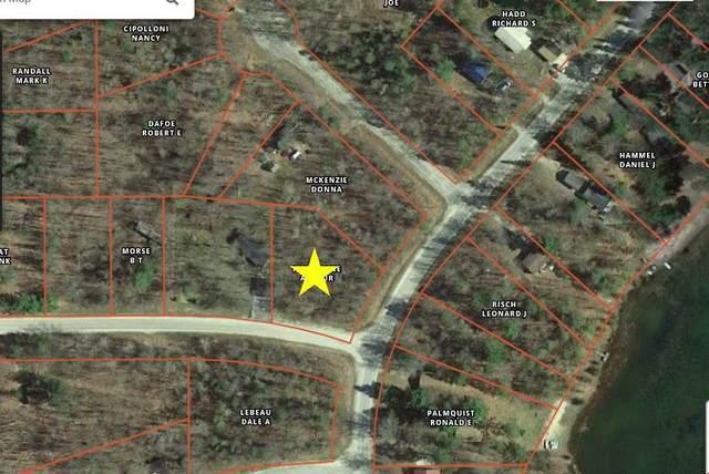 5243 Woodridge Road, Lewiston, MI 49756 (MLS #323037) :: CENTURY 21 Northland