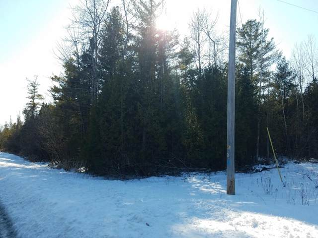 0 S Us-23 Highway Lot #19, Greenbush, MI 48738 (MLS #323053) :: CENTURY 21 Northland