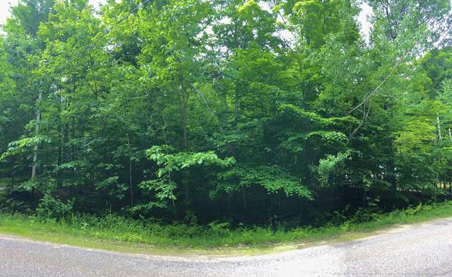 Douglas Lake Road, Pellston, MI 49769 (MLS #323809) :: CENTURY 21 Northland