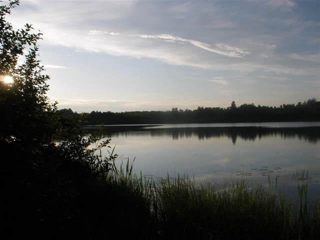 W Birch Shores Drive, Trout Lake, MI 49793 (MLS #323863) :: CENTURY 21 Northland