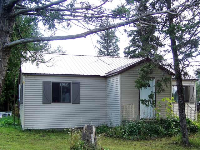 15871 N State Street, Hillman, MI 49746 (MLS #324121) :: CENTURY 21 Northland