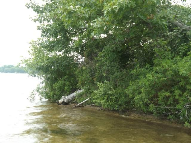 4998 Cedar Lake Road, Greenbush, MI 48738 (MLS #324195) :: CENTURY 21 Northland