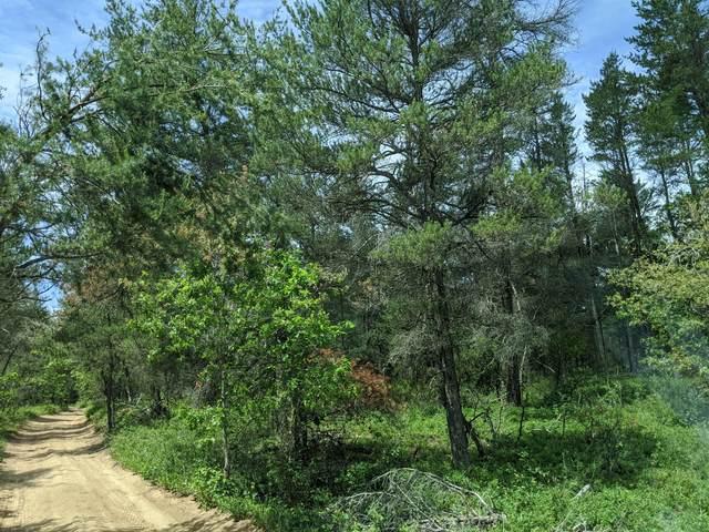 Timber Trail, Grayling, MI 49738 (MLS #324512) :: CENTURY 21 Northland