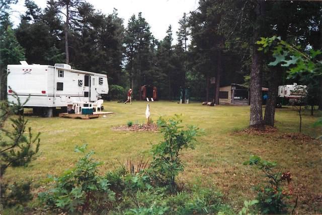 2664 Kosinsinski Trail, Lewiston, MI 49756 (MLS #324608) :: CENTURY 21 Northland