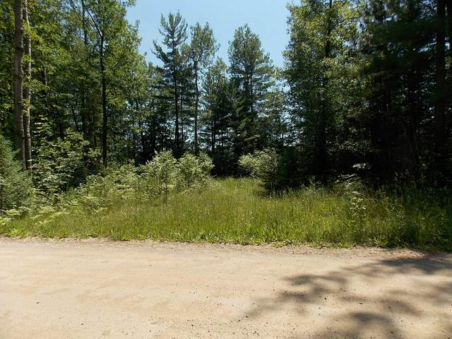 Krouse Road, Cheboygan, MI 49721 (MLS #324756) :: CENTURY 21 Northland
