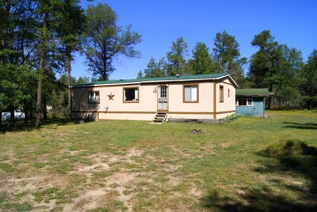 180 W Timber Trail, Grayling, MI 49738 (MLS #325907) :: CENTURY 21 Northland