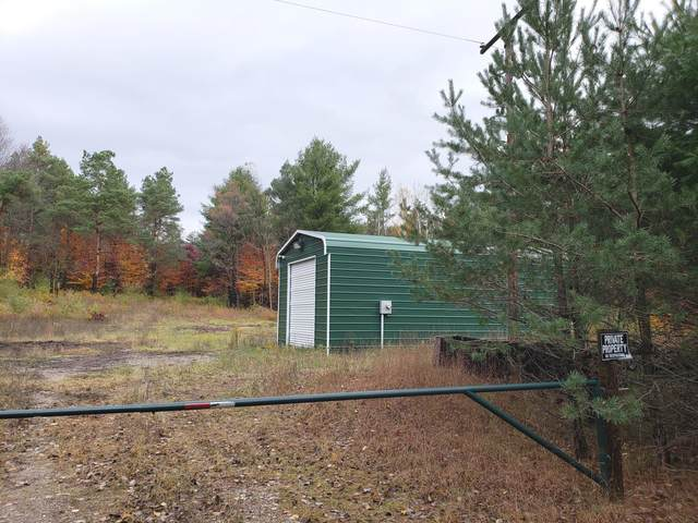 7310 Berry Creek Road, Indian River, MI 49749 (MLS #326541) :: CENTURY 21 Northland