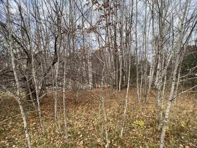 W Munro Lake Drive, Levering, MI 49755 (MLS #326652) :: CENTURY 21 Northland