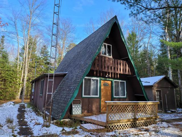 10761 Mohawk Trail, Roscommon, MI 48653 (MLS #326706) :: CENTURY 21 Northland