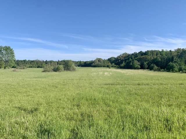 NHN Pleasant Valley Road, Hillman, MI 49746 (MLS #201812634) :: CENTURY 21 Northland